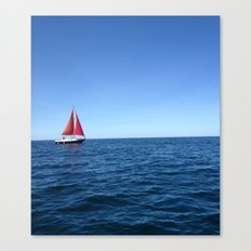 Floating Away Canvas Print