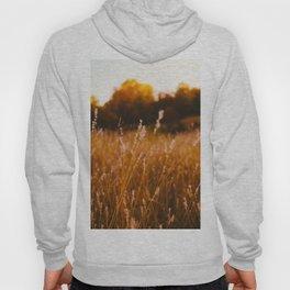 Golden Fields Hoody