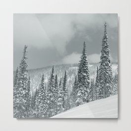 Winter 8 Metal Print