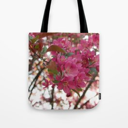 red crabapple flowers and sunset bokeh Tote Bag