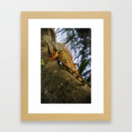 Trying to Blend In Framed Art Print
