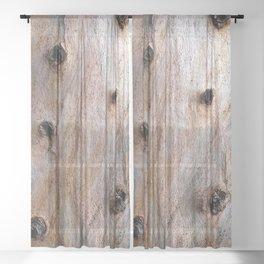 Eucalyptus Tree Bark and Wood Texture 14 Sheer Curtain