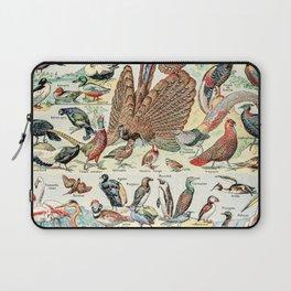 Wild Birds // Oiseaux by Adolphe Millot XL 19th Century Science Textbook Diagram Artwork Laptop Sleeve