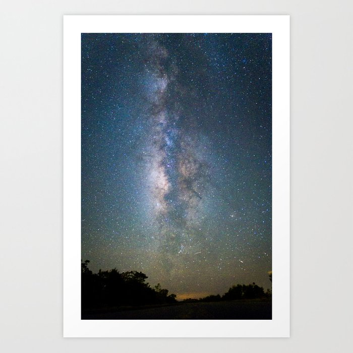 The Universe and the Everglades Art Print