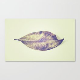 golden leaf Canvas Print