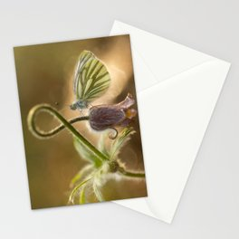 Morning impression with pasque flower and small butterfly Stationery Cards