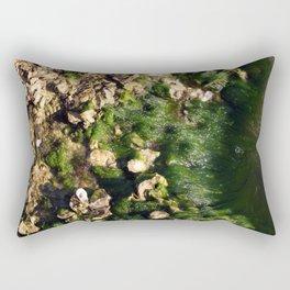 Outgoing Tide  Rectangular Pillow