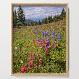SHRINE RIDGE COLORADO SUMMER MOUNTAIN WILDFLOWERS LANDSCAPE PHOTOGRAPHY Serving Tray