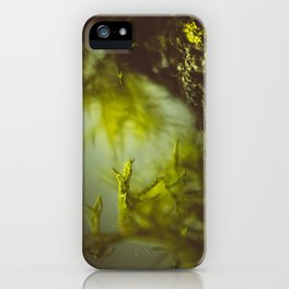 Lichen (moss) in a fog iPhone Case