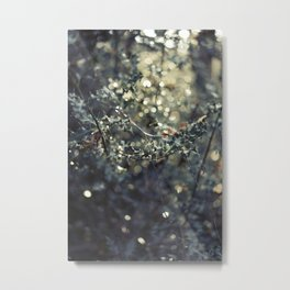 Holly leaves 2 Metal Print