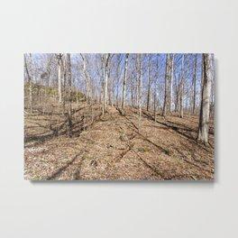 midwest woods Metal Print