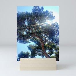 Shining Through Mini Art Print