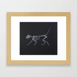 Cat Skeleton Framed Art Print