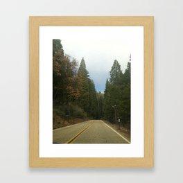 Sequoia National Park- Road Framed Art Print