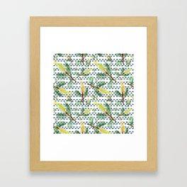Beautiful Australian Native Grevillea Flower Print Framed Art Print