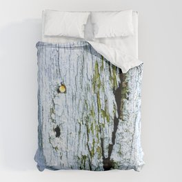 Weathered Barn Wall Wood Texture Comforters