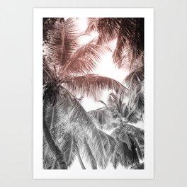 High palms on a tropical beach Art Print