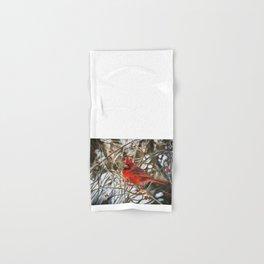 Winter Cardinal by Teresa Thompson Hand & Bath Towel