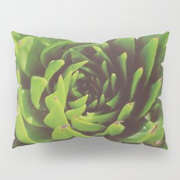 Seaside Succulent Pillow Sham