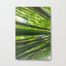Bamboo Forest Triptych, Left (1 of 3) Metal Print