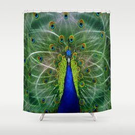 Peacock dreamcatcher Shower Curtain