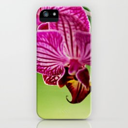 Close up Orchid #4 iPhone Case