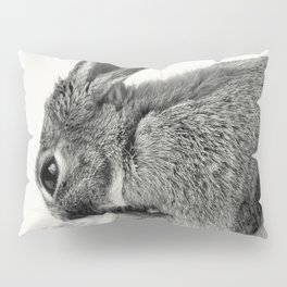 Rabbit Animal Photography Pillow Sham