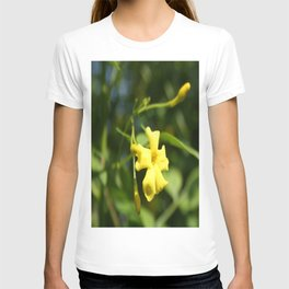 Carolina Jasmine Single Bloom In Sunlight T-shirt