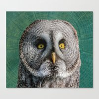 grey Canvas Prints featuring GREY OWL by Catspaws