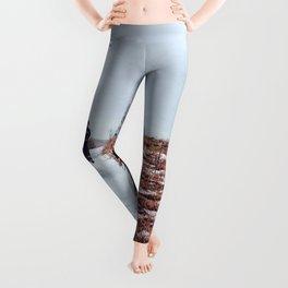 Horseback Leggings