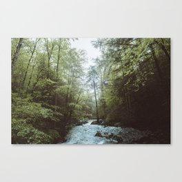 Peaceful Forest, Green Trees and Creek, Relaxing Water Sounds Canvas Print