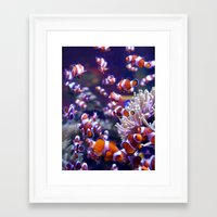 nemo Framed Art Prints featuring Nemo by Arielle Walker
