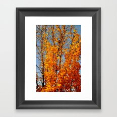 colorful tree Framed Art Print