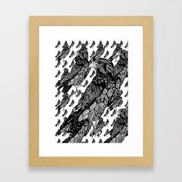 Feathers!!!! Framed Art Print
