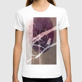 Natural experiment T-shirt