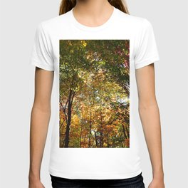 Through the Trees in October T-shirt