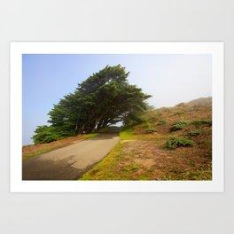 Wind Swept Trees Art Print