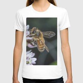 Honey bee and Milkweed flowers T-shirt