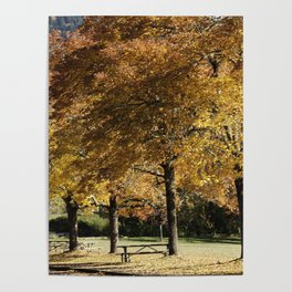 Fall in Lowell Oregon Poster