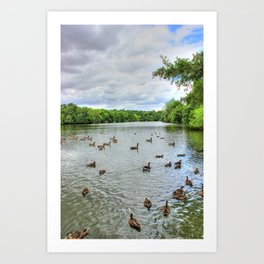 Cloudy Day at the Lake Art Print