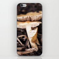 mushroom iPhone & iPod Skins featuring Mushroom by Alane Gianetti