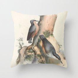 Eurasian Nuthatch sitta syriaca3 Throw Pillow