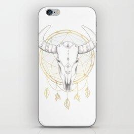Southwestern Vibes iPhone Skin