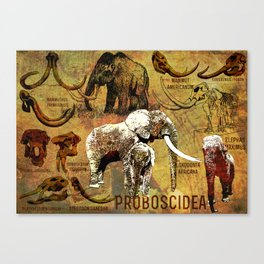 Proboscidea (The Evolution  of the Elephant) Canvas Print