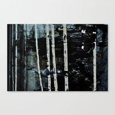Birch Forrest At Night Canvas Print