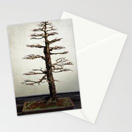 Montezuma Cypress Bonsai Stationery Cards
