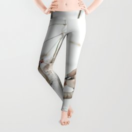 Bohemian waxwing Leggings
