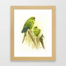 Kakariki Framed Art Print