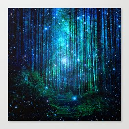 magical path Canvas Print