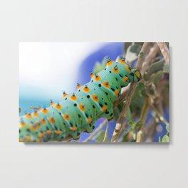 Black Moth Caterpillar Metal Print